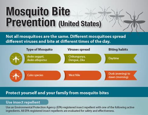 mosquito-bite-prevention